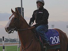 California Chrome Draws Wide for World Cup