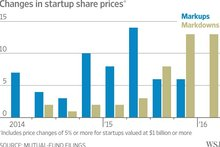 Mutual Funds Sour on Startup Investments