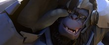 What Entrepreneurs Can Learn from Blizzard Entertainment