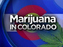 Revenues From Marijuana Tax In Colorado Growing At Astounding Rate