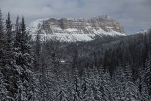 The call of winter: Reflections on Wyoming's season of stillness