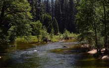 Yosemite is third-oldest national park, but parks idea was born there