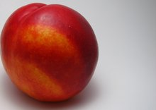 Peach Gets An Unofficial Web And Android Version Called Nectarine