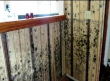 Mold serious health issue for neighborhoods hit hard by Sandy