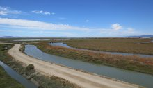 The Slow-Moving Disaster: Rising Bay Levels
