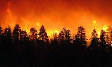 Firefighters get firsthand look at need to confront climate change: Guest commentary