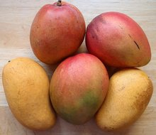 The Trouble with Mangoes ENCORE