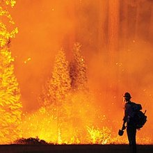 America Is Burning: The Fight Against Wildfires Gets Real