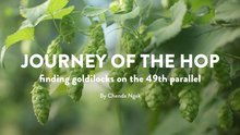 Journey of the Hop