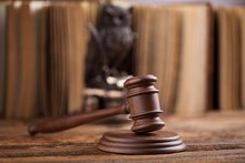 New Florida Bar section boosts animal law