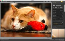 Google's giving away $500 worth of photo software for free - but is it any good?