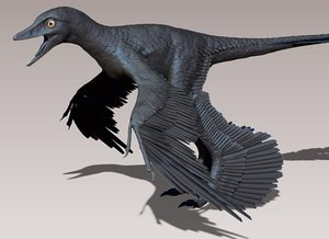 Dragon-Like, Feathered Dinosaur Was Ace Flyer